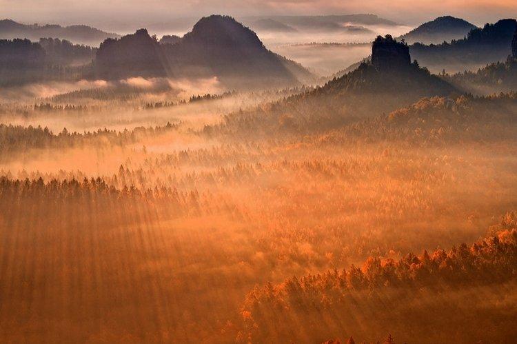 Солнечные лучи над осенним лесом. Фото: Tomas Morkes