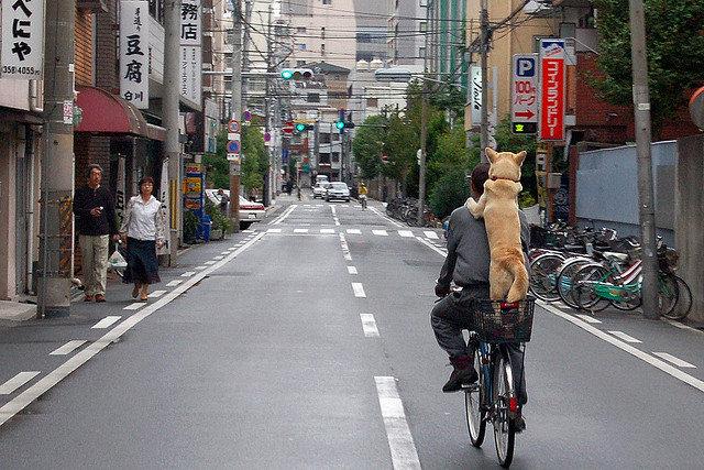Стрит-фотография для начинающих - Уличная фотография - Как фотографировать на улице - Фотосайт funPhoto
