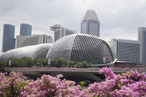 театральный комплекс в сингапуре Esplanade