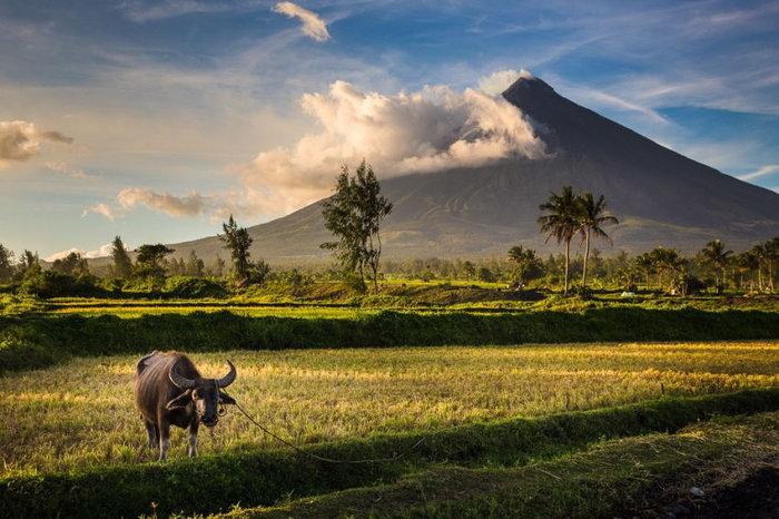 вулкан Майон фото 4