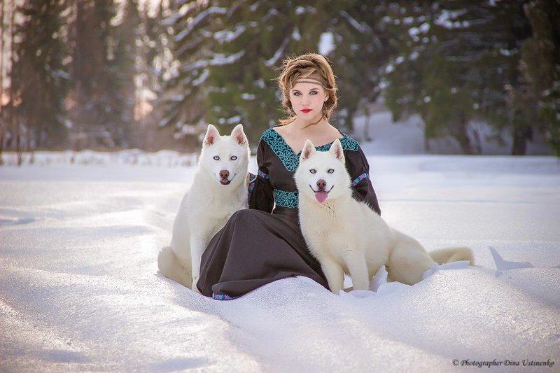Сибирский Хаски и Аляскинский Маламут для Фото Съемки - Марковские Форумы Ижевск