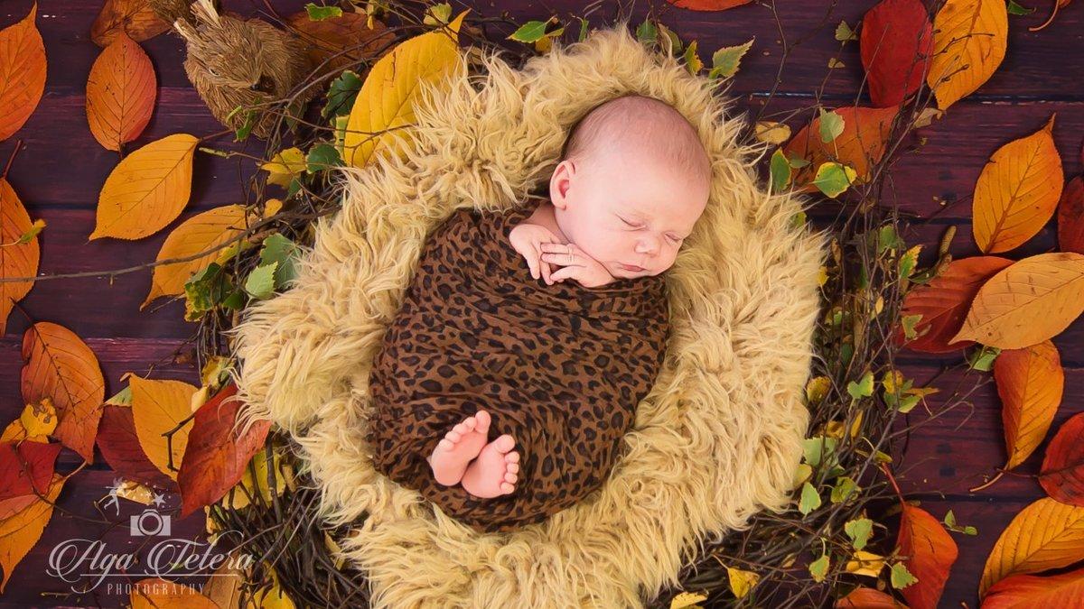 Гифки малыши и осень