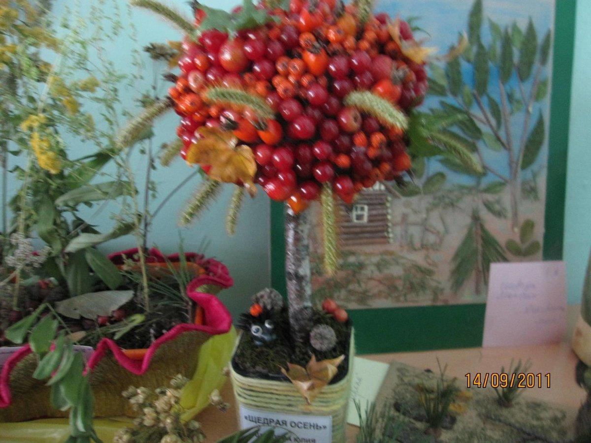Поделки золотая осень своими руками из природного фото 642