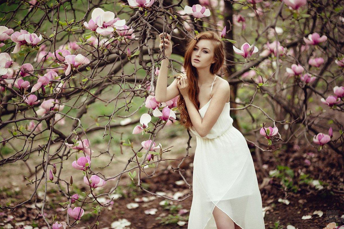 нарисовать реклама фотосессии около цветущих деревьев хорошо прижился небольших