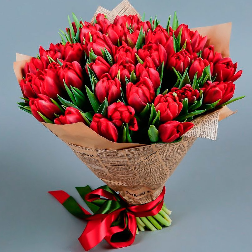 Цикламенов, большой букет красных тюльпанов картинки