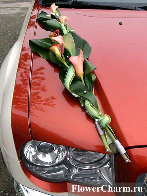 Купить цветы в житомире машину