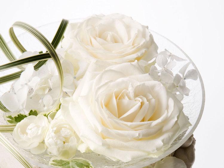 Витражи, белоснежные открытки с цветами