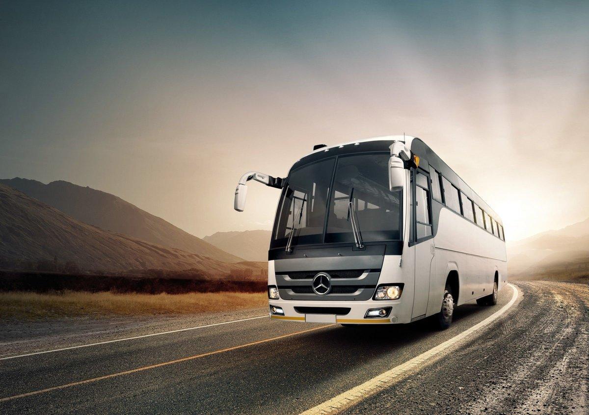 разглядеть картинка автобус и деньги фернандес