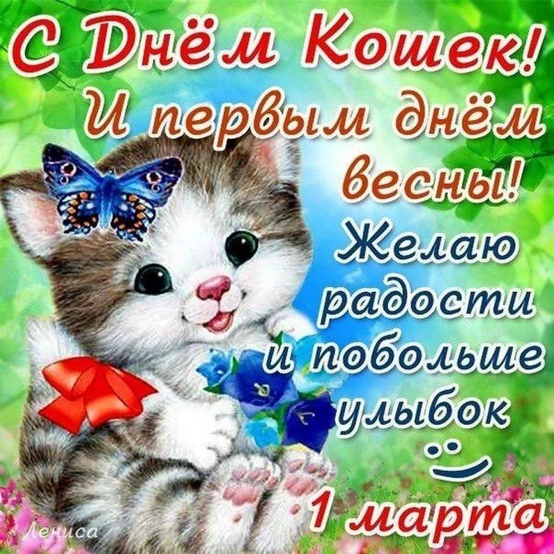 День кошек красивые картинки