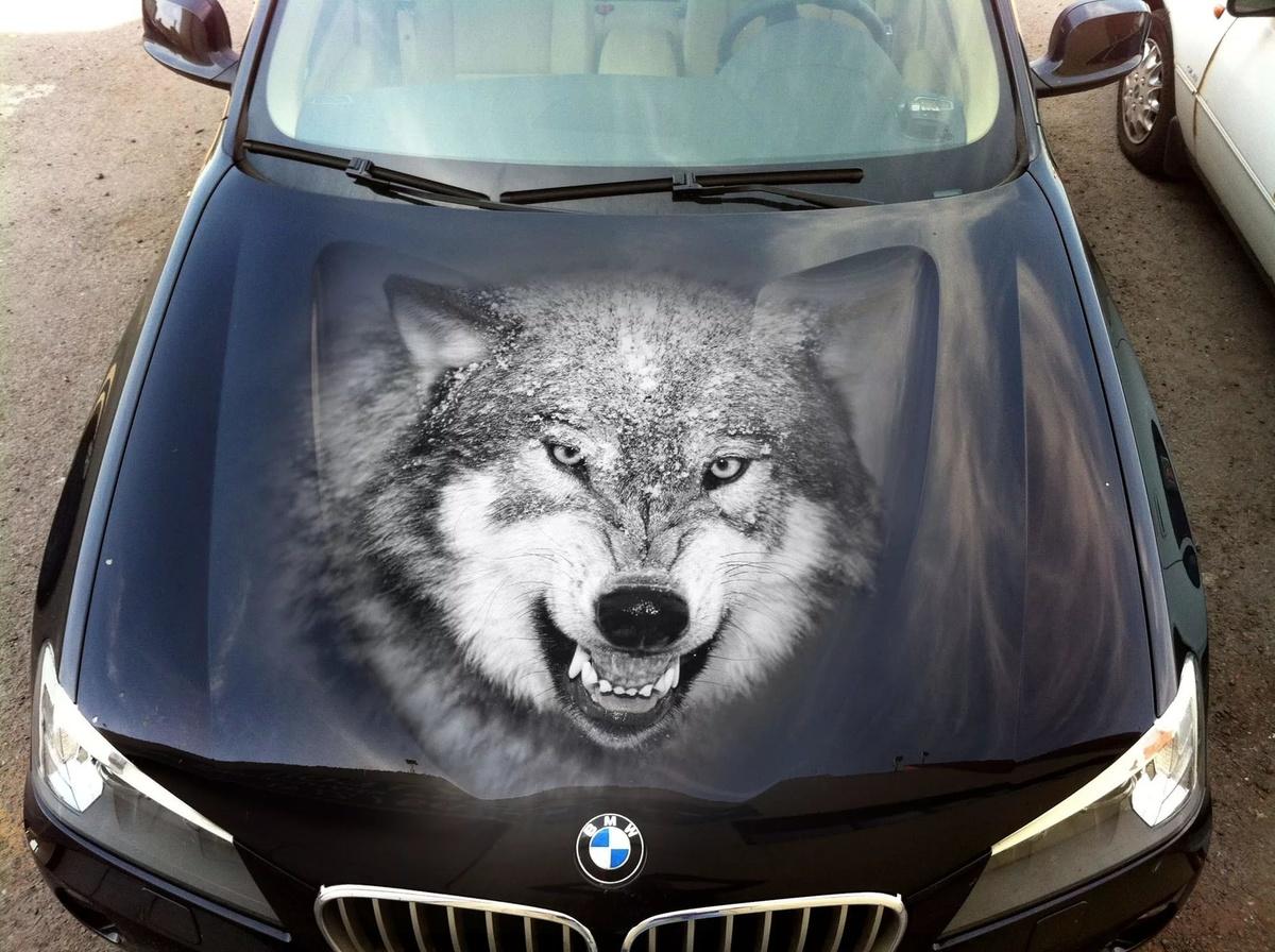картинки волк на капот авто нее задних лапках