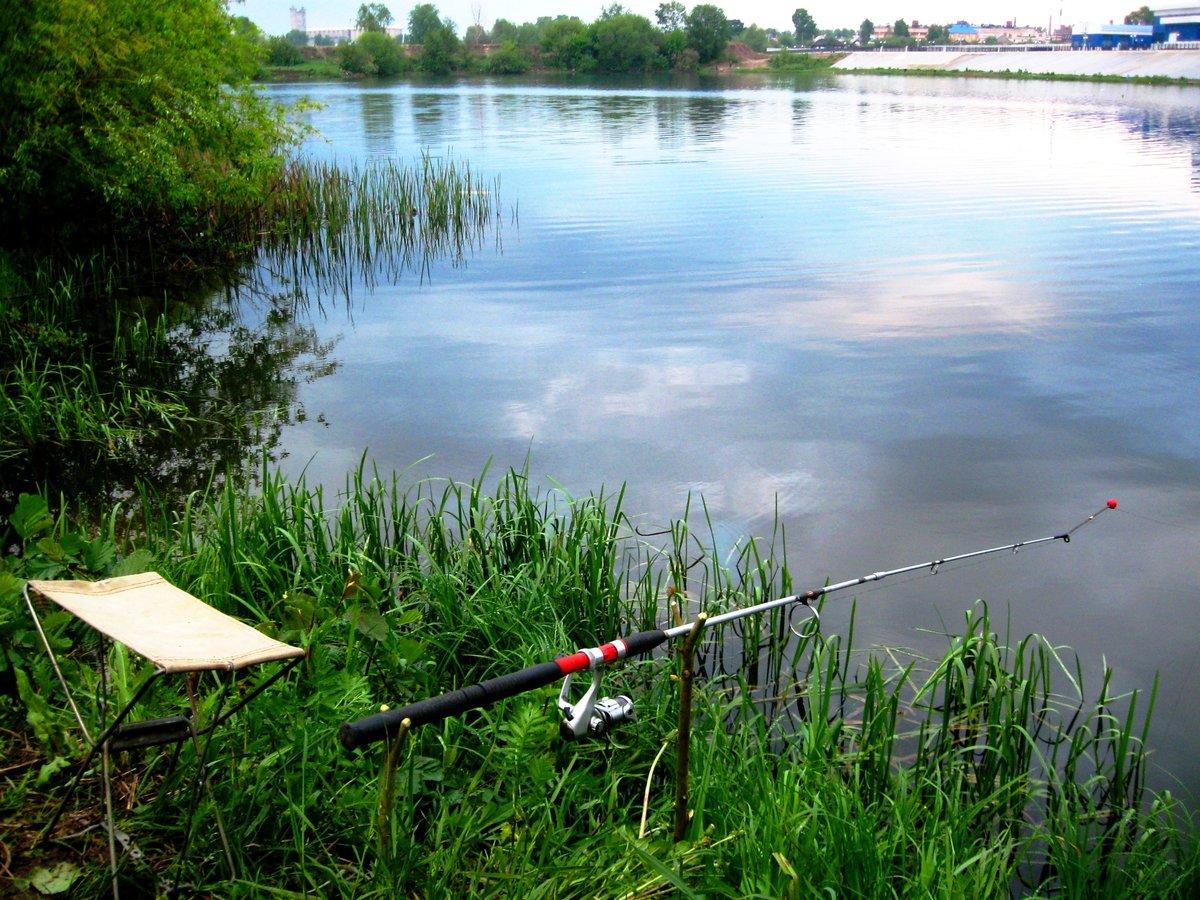 Рыбалка на озере картинки
