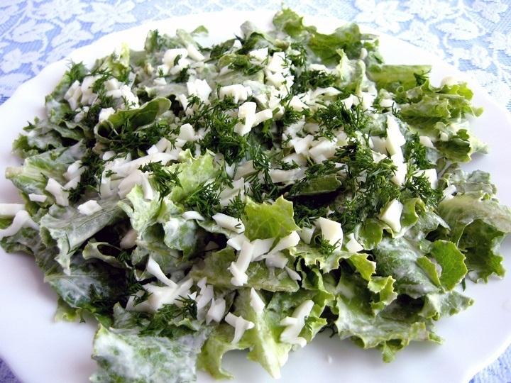 Салатные листья самых разных цветов и формы невероятно красиво смотрятся в любом салате.