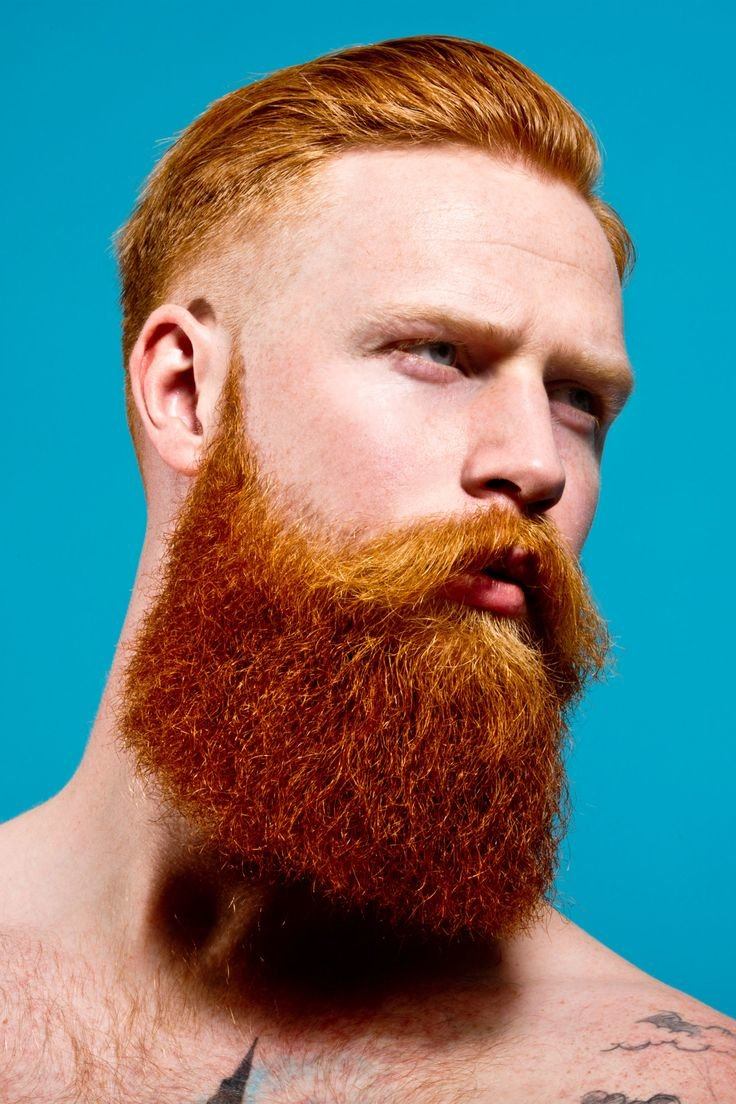 Redhead with beard, young girl forum bbs