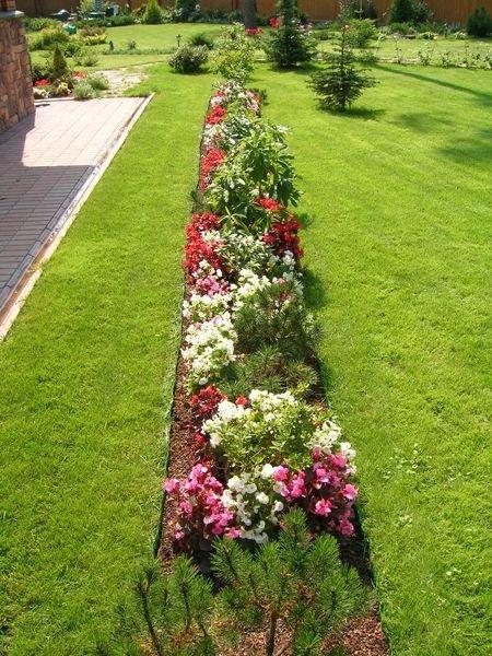 Разноцветный садовый бордюр.