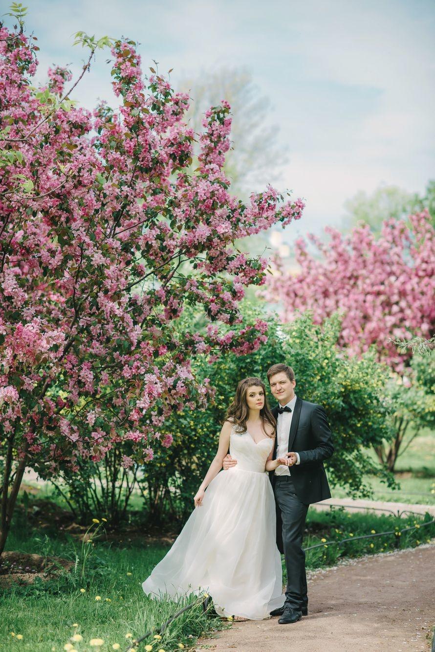 еще идеи для свадебной фотосессии весной фото мультиварке