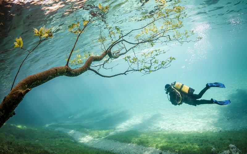 фото под водой дайвинг