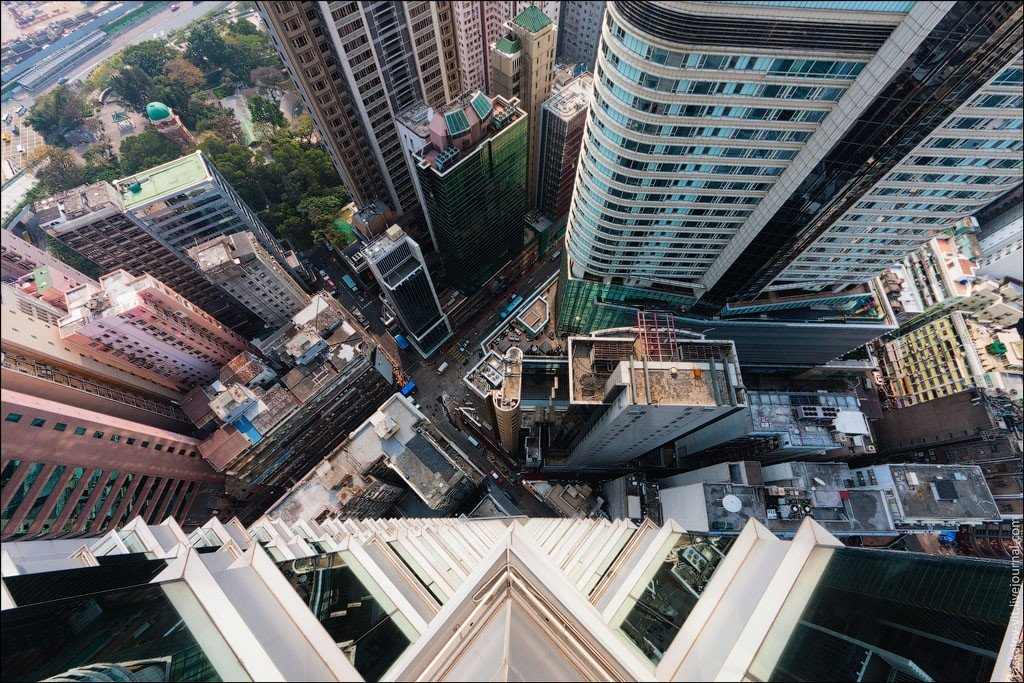 заросшем город вид с крыши фото обеспечивают