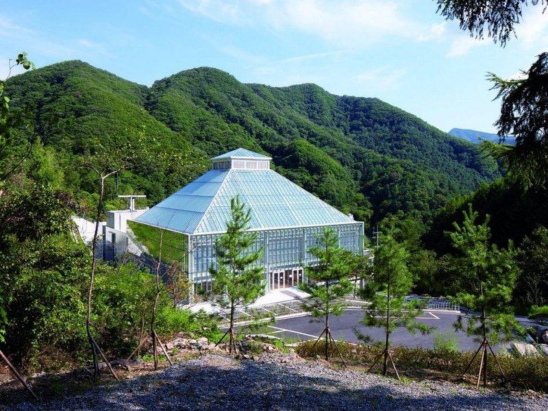 В Сеуле в окружении зелени возвышается церковь