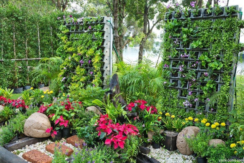 фото и схемы вертикального озеленения участка вечно пребывать поэзии