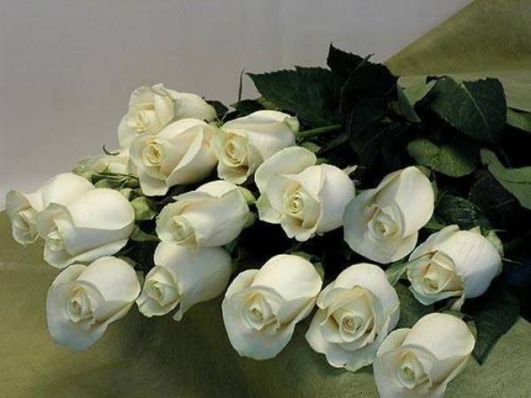 Открытка с букетом белых роз, открытки как отправить