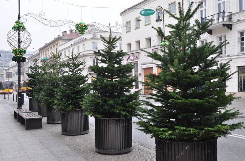 Ели и украшения на улице в Варшаве.