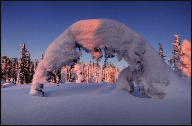 Все знают, что Санта-Клаус поселился в одной из губерний заснеженной Финляндии, а точнее в Лапландии. Жители Финляндии очень трепетно относятся к природе. Очень