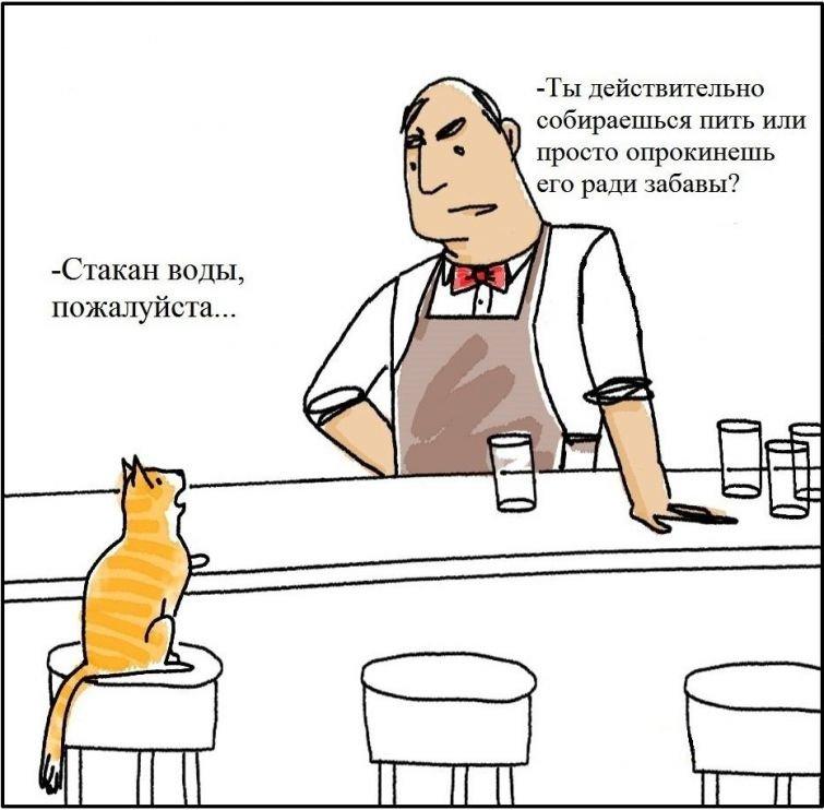 15 смешных комиксов для тех, у кого есть кот — Интересное — Релакс!