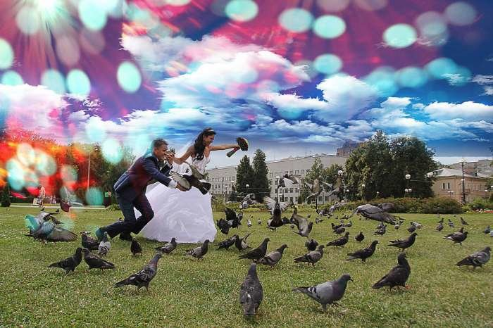 [24] Веселые свадебные фотографии (часть 5) (27 фото)