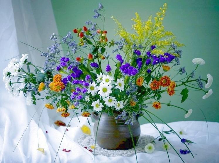 Открытка полевыми цветами