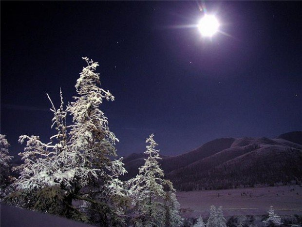 Фото тайга зимой » Охота в Сибири | Сибирский охотник