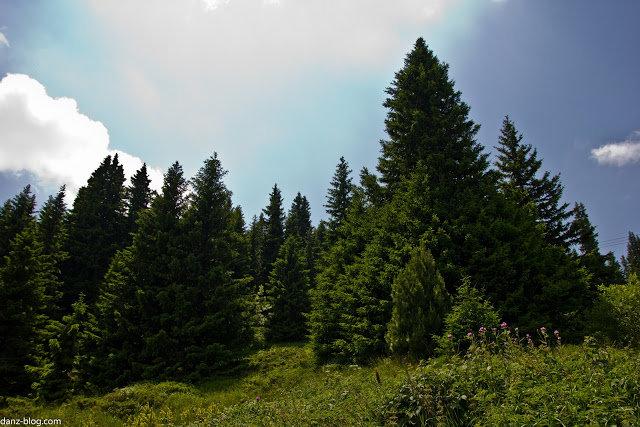 Фото Жизнь: Болгария. Гора Витоша и Рильский монастырь