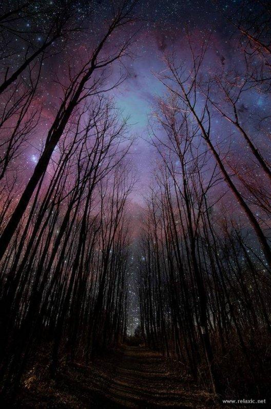 Фотографии ночного неба