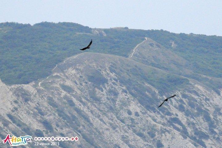 Горы и скалы курорта Анапа: фото, мнения, впечатления и комментарии - Отдых в Анапе — общие темы - Форум Анапа Курорт Инфо
