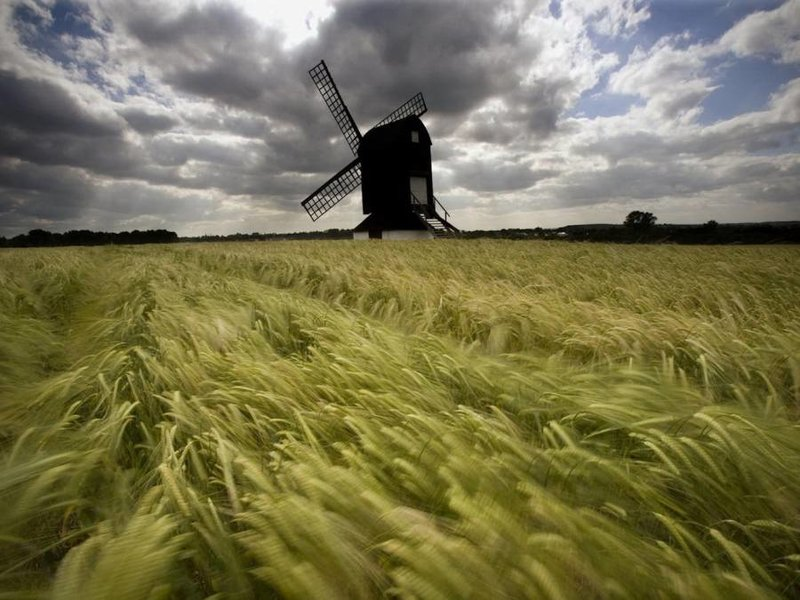 Как бороться с ветром при фотосъемке