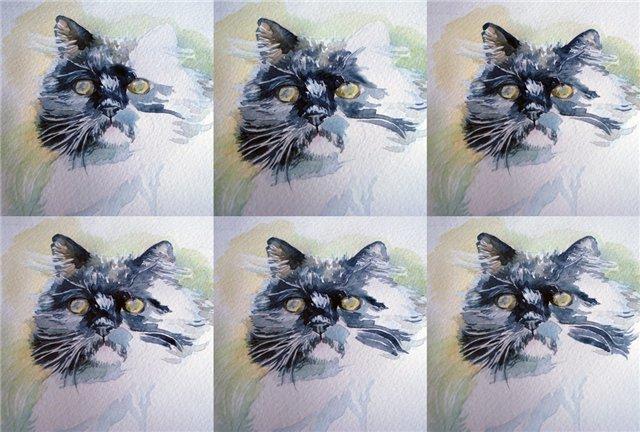 Нарисовать акварелью домашнее животное «  Blog Presspull