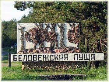 Наследие ЮНЕСКО — Беловежская пуща