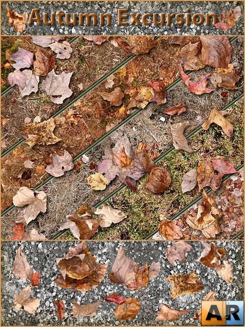 Осенние текстуры и паттерны Photoshop - Autumn Excursion