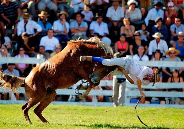 уругвайский ковбой