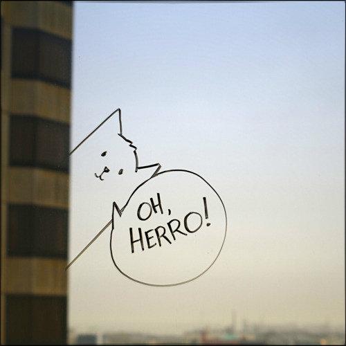 Забавные рисунки на окнах