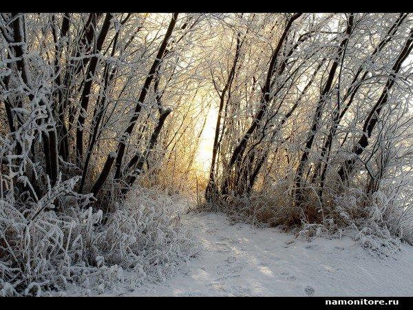 Зима - Обои для рабочего стола. Wallpapers
