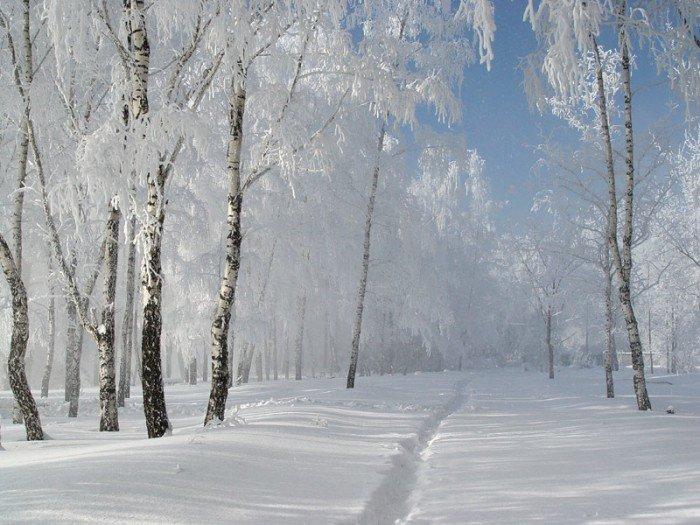 зимние фотографии - 01