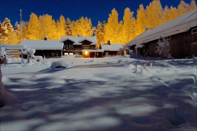 Зимний лес фото » Охота в Сибири   Сибирский охотник