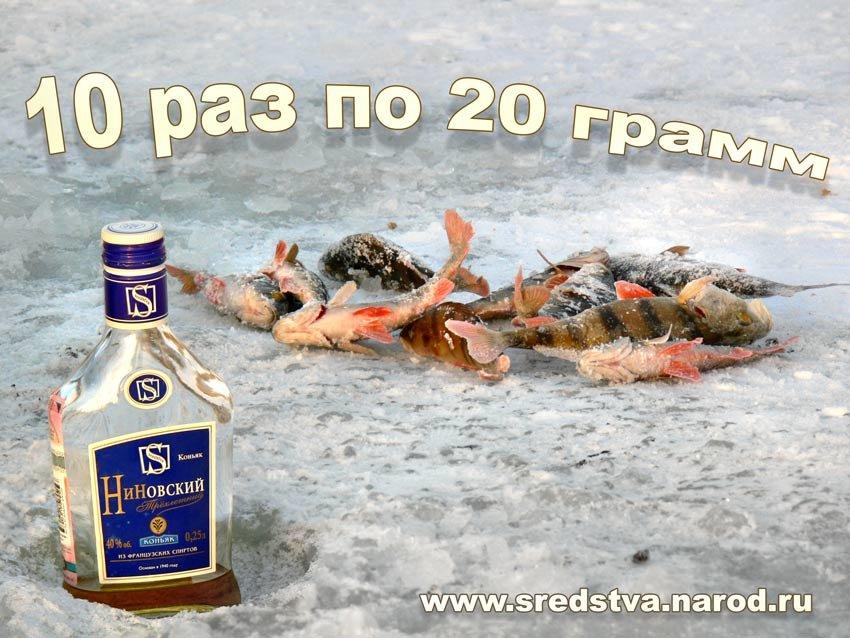 Смешные картинки про рыбаков и водку