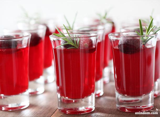 anindom.com | рецепты | Алкогольное Желе (для праздничной вечеринки)