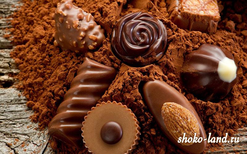 Шоколад и все о нем: рецепты, виды, польза и другое