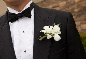 Как выбирать галстук для жениха | Вместе рядом