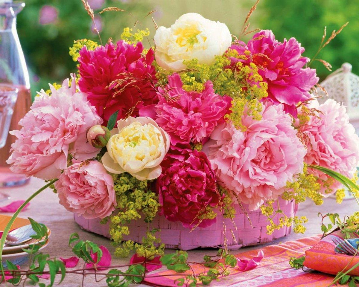 Про честность, картинки с цветами пионами