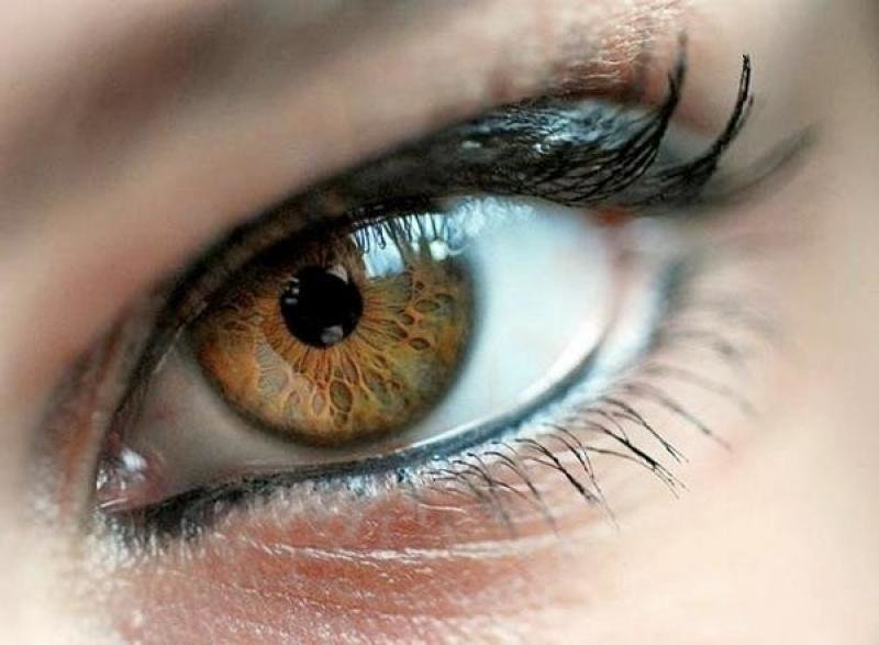 К чему снятся карие глаза – сонник: карие глаза во сне – вероломство, хитрость, предательство.