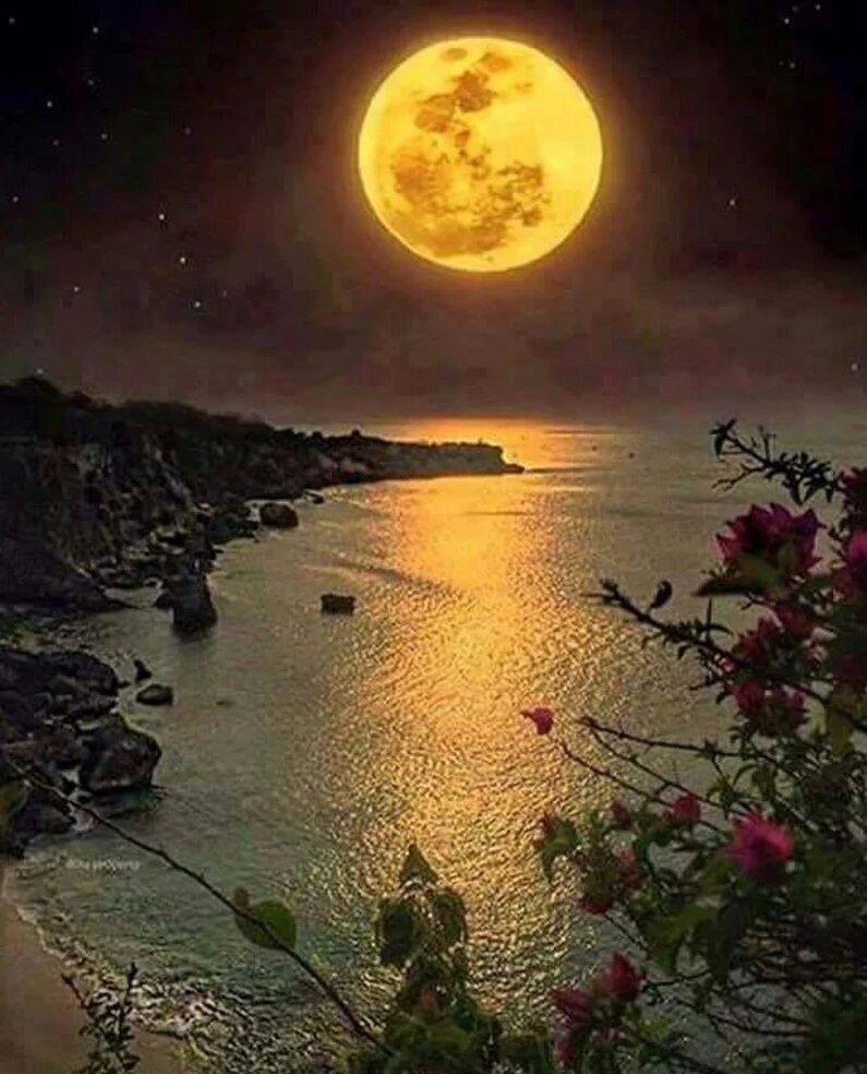 приятные ночные картинки
