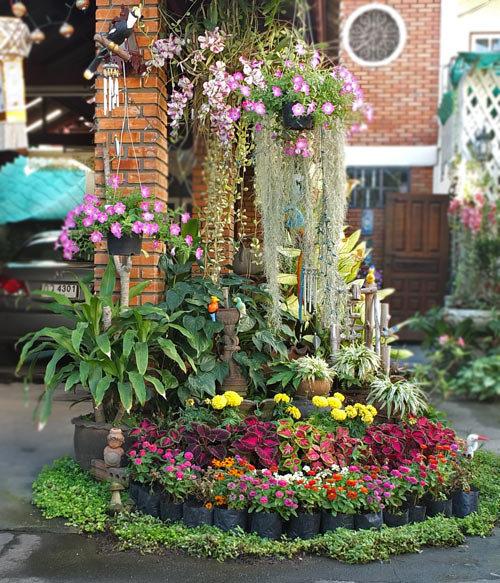 Дачный дизайн цветы 151